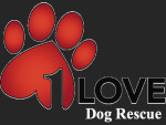 1 Love Dog Rescue