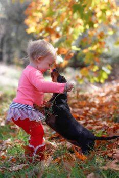 doggie_hug-500-750